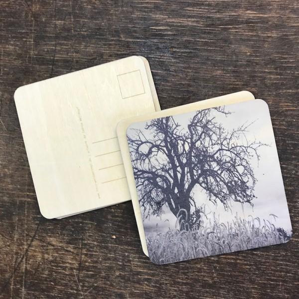 "Holzpostkarte ""Baum in s/w"""
