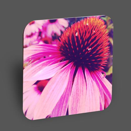 "Holzpostkarte ""pink beauty"""