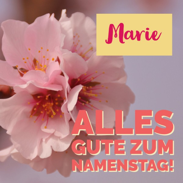 """Holzpostkarte Namenstag """"Mandelblüte"""""""
